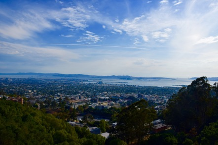 View of Berkeley and the Bay from the Berkeley Hills