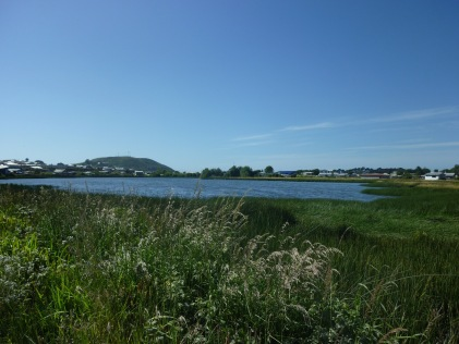 Hiking along marsh land and lakes in on the island of Chiloe in Chile