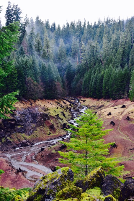 Colorful clay riverbeds and evergreens on a cloudy day