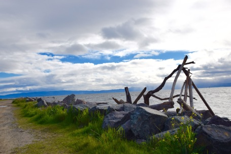 Stumbled across a driftwood structure by the bay in Alameda