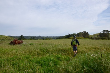 Hiking through a meadow with a Gregory backpack