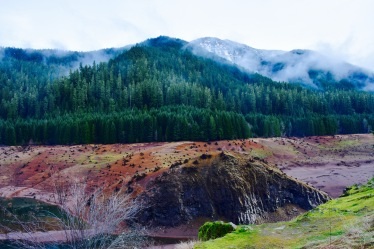 Colorful clay lakebed with snowy evergreens