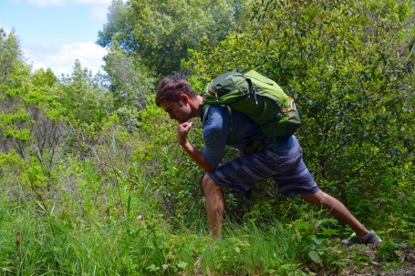 Man posing in the forest on a hike