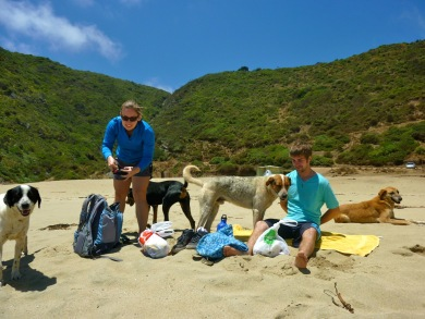 Enjoying a picnic with 4 stray dog friends at Laguna Verde in Chile