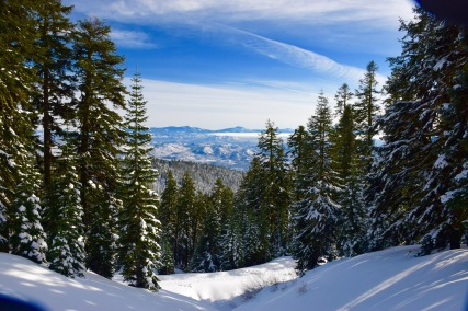 Sunny day on the backcountry side of snow-covered Mount Ashland