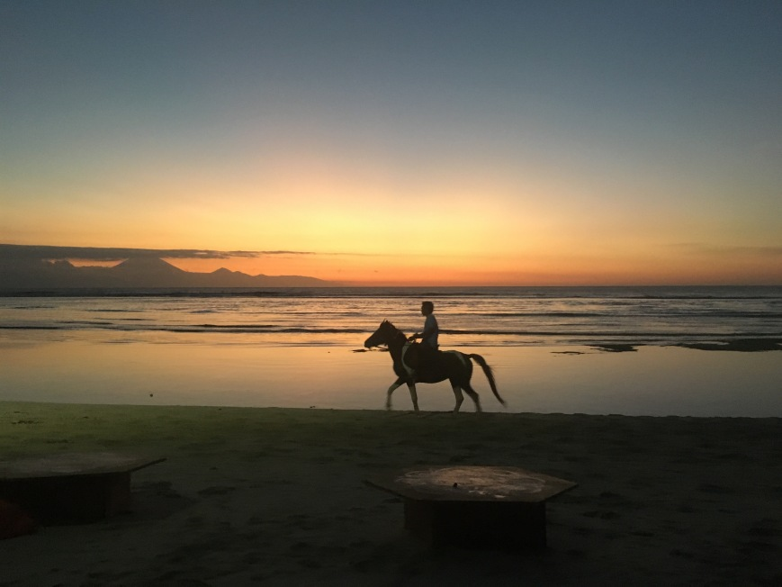 Horse galloping along the beach at sunset on Gili T