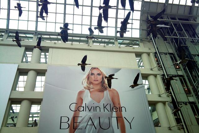 Calvin Klein Billboard depicting what beauty is