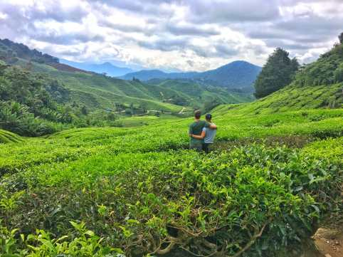Enjoying the tea plantation outside the BOH tea factory in the cameron highlands of Malaysia