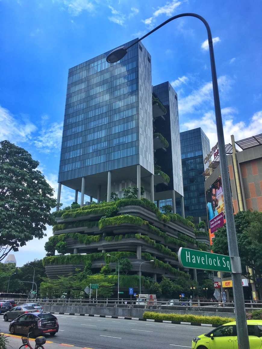 Skyscrapers with jungles built into them in Singapore