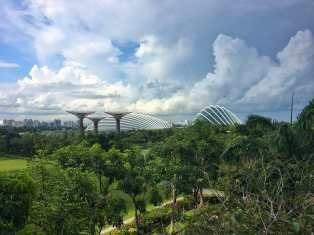 Gardens By The Bay and the two conservatories in Singapore overlooking the water
