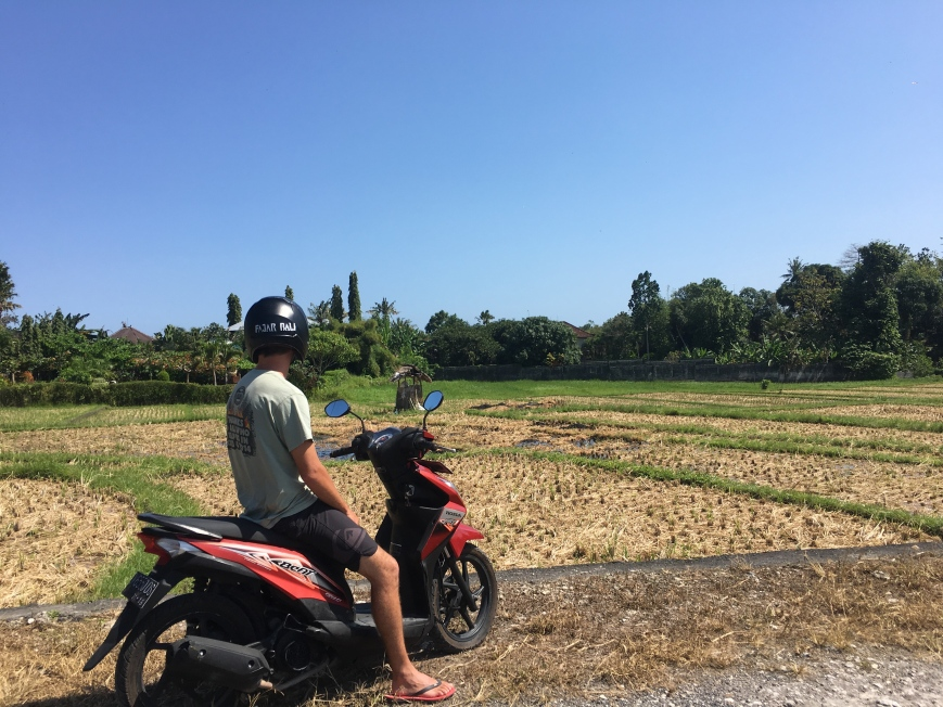 Stopped with our moped on the side of some rice fields in the outskirts of Canggu, Bali
