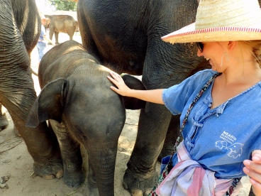 Playing with elephants at Maerim Elephant Sanctuary in Chiang Mai Thailand in Traditional Mahout Clothing