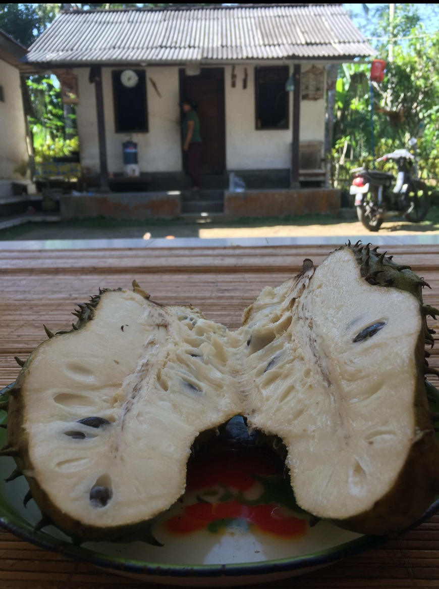 Trying new fruits and being welcomed into Nyonman's (Remy's Cousin) home for a day spent exploring Bangli, Bali