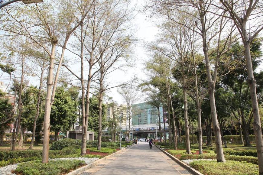 View walking through Daan Forest Park in Taipei