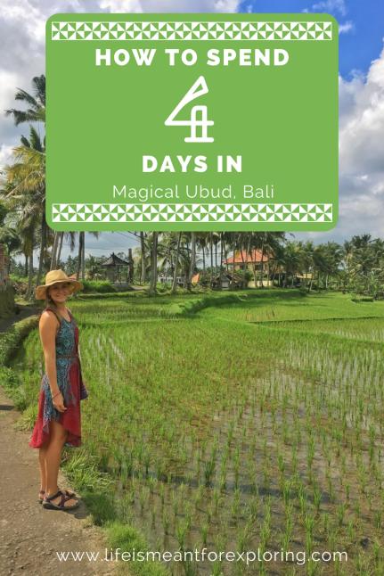 4 days in Ubud (1)