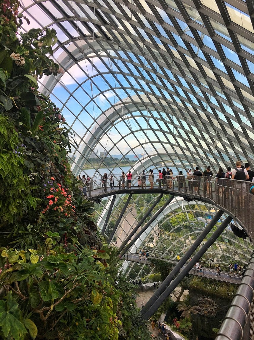 People standing on a raised walkway inside the glass-walled cloud conservatory