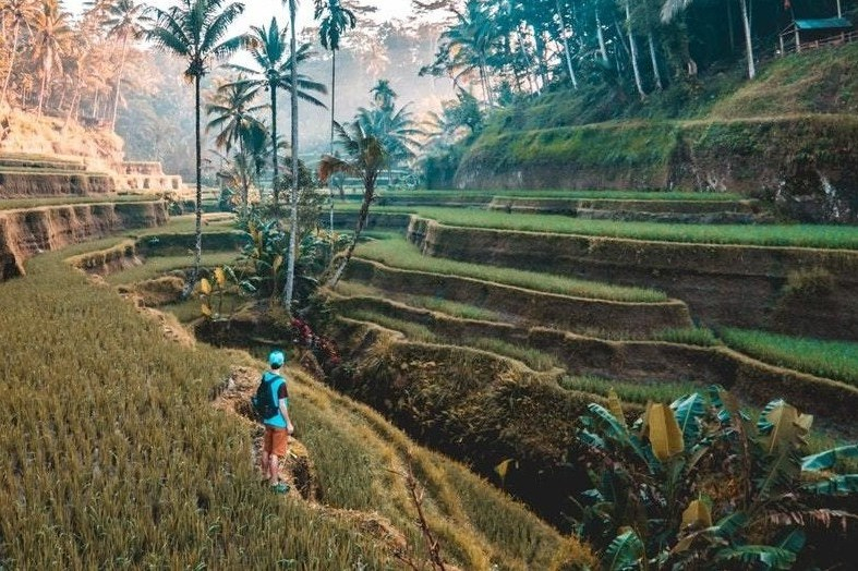 Click here for the best Places to see in Bali: The Ultimate Bali Itinerary