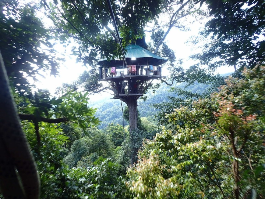 Treehouse suspended in the tree canopy of the jungle in Northern Laos as part of the Gibbon Experience